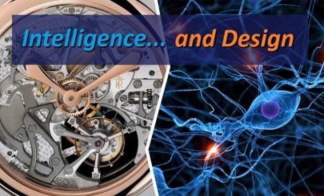 Intelligence & Design